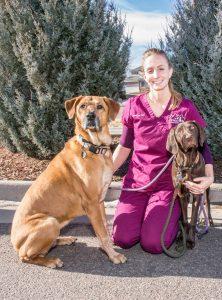 Johanna, Certified Veterinary Technician