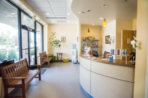 Our lobby is ideal for a veterinary clinic as it allows for some separation of patients to minimize stress.