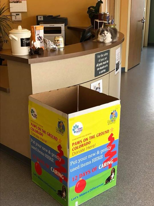 Whisper said she bets you have some gently used pet supplies you'd like to share with this year's Pet Scoop nonprofit winner Paws on the Ground Colorado. If you'd like to help, stop by and help us fill up this big box!!!